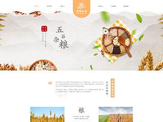 五谷杂粮特色美食网站模板 网站建设 网页设计 企业网站定制开发