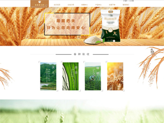 大米网站模板 网站建设 网页设计 企业网站定制开发