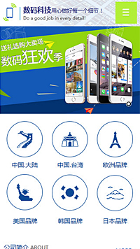 IT科技、软件行业手机网站亚博国际app官网