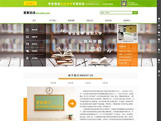 教育培训网站模板531