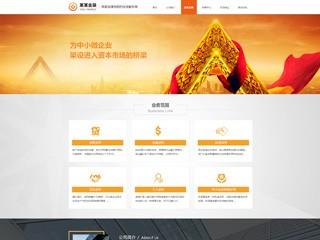 金融投资网站模板785