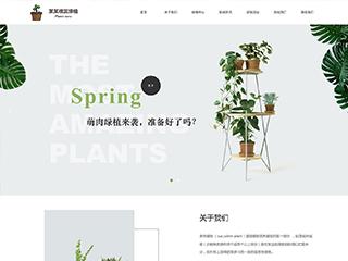 观赏绿植网站模板1631
