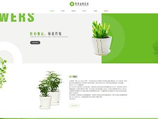 鲜花网站模板812