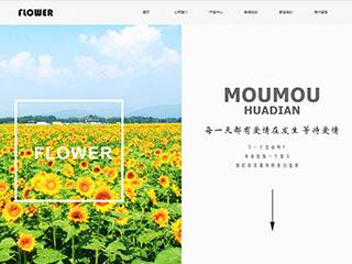 鲜花网站模板814