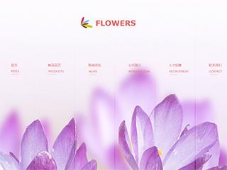 精美模板-flowers-88