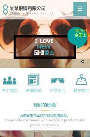 眼镜行业手机网站模板