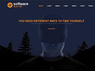 IT科技、软件行业电脑+手机+微信网站模板