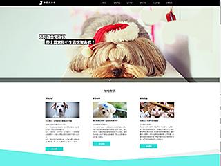 宠物网站模板53