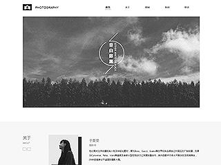 艺术摄影网站模板1200