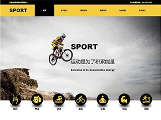 运动网站模板161