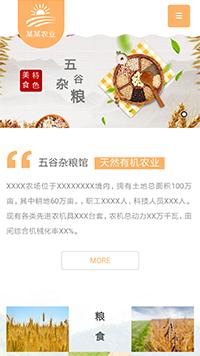 五谷杂粮特色美食手机网站模板 网站建设 网页设计 企业网站定制开发