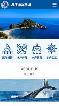 海洋渔业手机网站模板 网站建设 网页设计 企业网站定制开发
