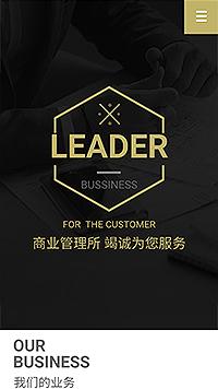 商标注册公司网站建设-记账报税公司网站设计-广告设计公司网站建设