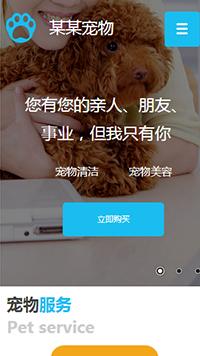 宠物网站设计-宠物网站模板-宠物网站建设-宠物网站制作-宠物网站开发