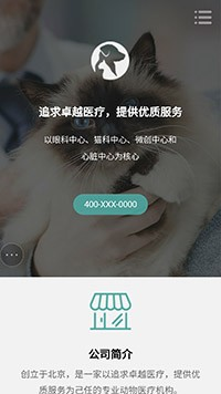 宠物医院网站建设-宠物网站设计-宠物网站制作-宠物医院网页设计-宠物网站模板