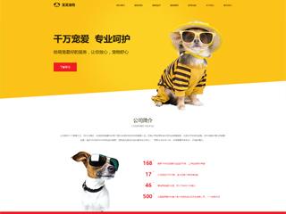 宠物网站建设|7804