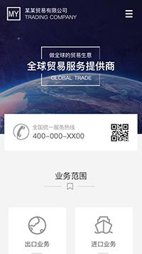 外贸网站模板-进出口网站建设-外贸网站设计-外贸服务网站开发-贸易公司网站制作